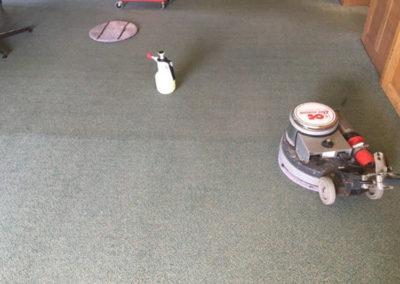 Domestic Carpet Care